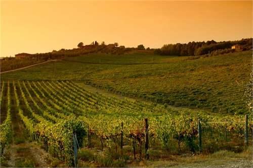 # 12444180 - £3,278,940 - Vineyard, Friuli Venezia Giulia, Italy