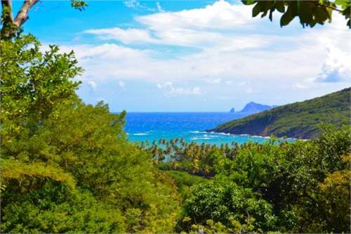 St Vincent and Grenadines Real Estate #7264862 - £187,131 - Land